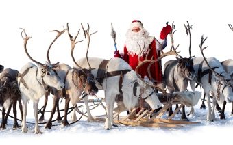 real-santa-claus-sleigh-and-reindeer_555587